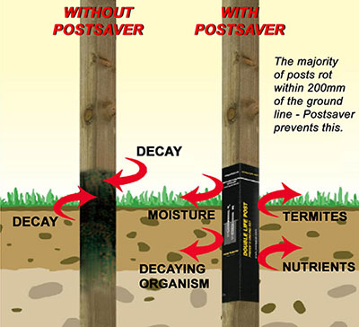 Post Save rot prevention in wooden fance posts
