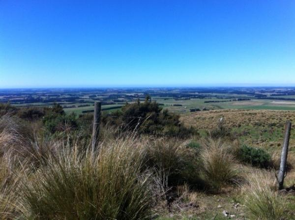 Views of the Canterbury Plains on the way down